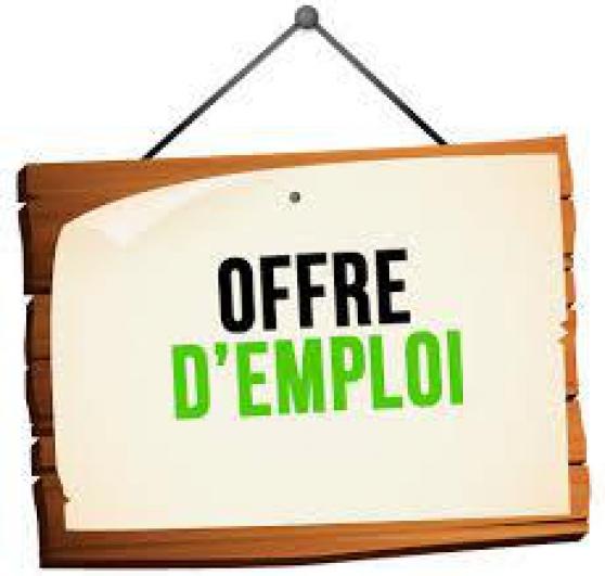 Annonce occasion, vente ou achat 'Offre travaille- Recherche urgent'