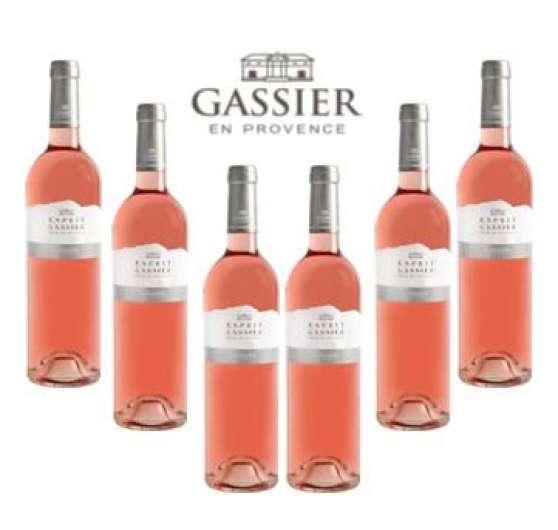 Carton 6 bouteilles Esprit Gassier