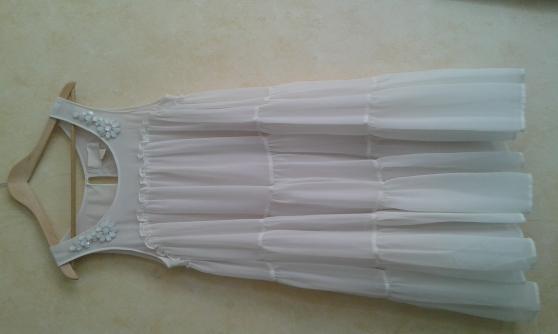 robe T40