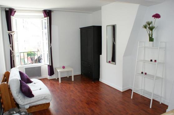Studio entièrement meublé 21 m2 rénové