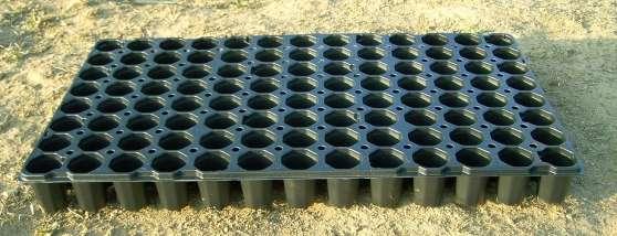 Plaques alvéolées pour semis
