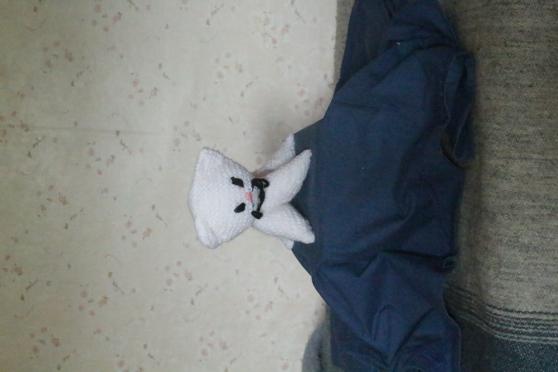 Petite Annonce : Doudou  petit chat - Confectionnés entièrement à la main en laine ordinaire conviendra a