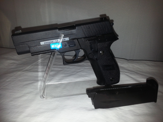SIG F226