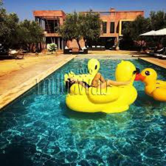 Villa Maître 5 ch+ Villa 2 ch 2 piscines