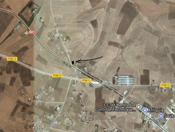 terrain agricole à ben ahmed au maroc - Annonce gratuite marche.fr