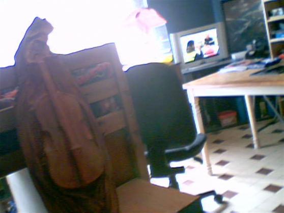 vend violon en cuir déco - Annonce gratuite marche.fr