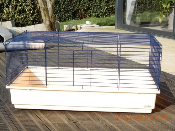 Cage metallique transport animaux