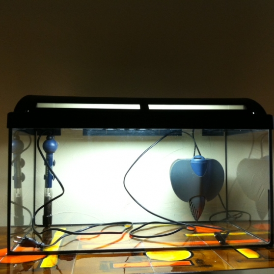 Vends aquarium de 54 L