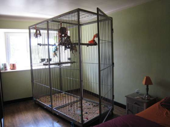 cage perroquet inox massif animaux cages caurel reference ani cag cag petite annonce. Black Bedroom Furniture Sets. Home Design Ideas