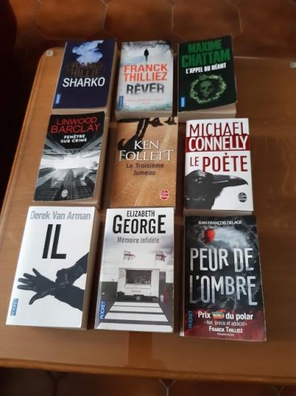 Livres de poche et autres . Thriller/rom