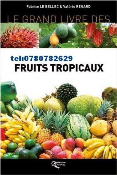 livre fruit viagra - Annonce gratuite marche.fr