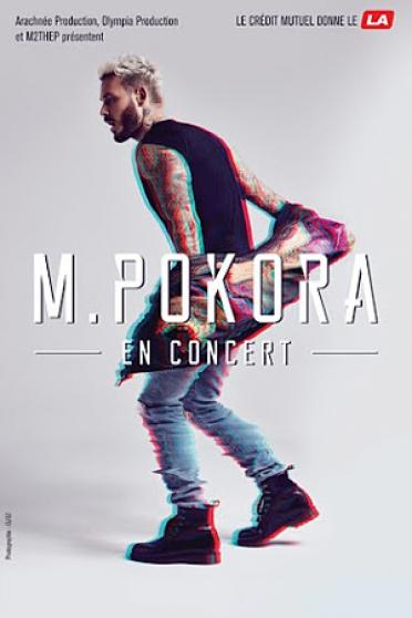 deux pass concert matt pokora le16/12/17 - Annonce gratuite marche.fr