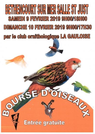 bourse aux oiseaux - Annonce gratuite marche.fr
