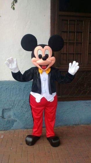 mascottes mickey et minnie sur lyon - Annonce gratuite marche.fr