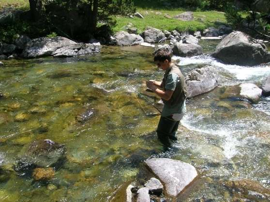 Annonce occasion, vente ou achat 'Pêche de la truite dans les Pyrénées'