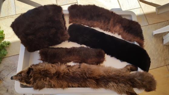 Annonce occasion, vente ou achat 'Étole, manchon, écharpe, cols...'