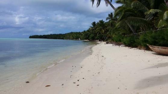Annonce occasion, vente ou achat 'Très beaux terrains au bord du lagon'