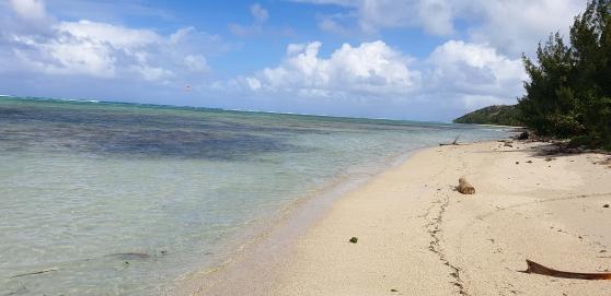 Annonce occasion, vente ou achat 'Terrains sur le lagon de Sainte Marie'