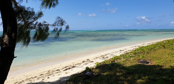 A 100m de la plage - Photo 3