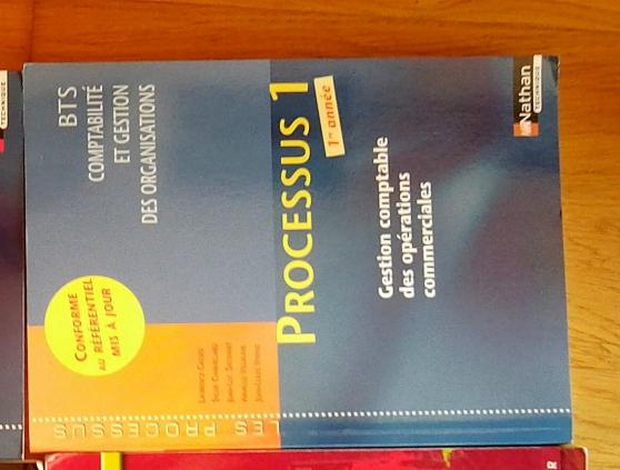Vends livre Processus 1 BTS 1ère année
