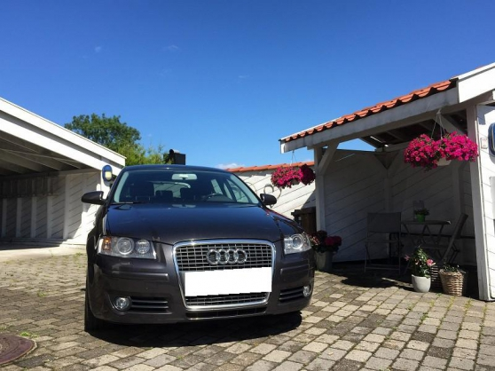 audi a3 1 9 tdi 105 hk ambition sportbac montpellier auto audi montpellier reference aut. Black Bedroom Furniture Sets. Home Design Ideas