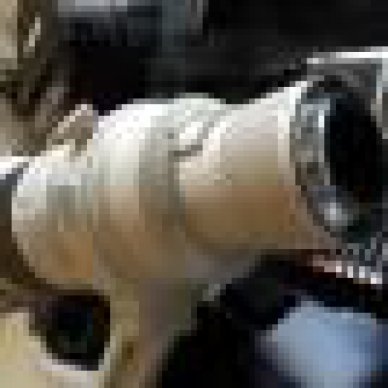 canon lens ef 600mm 14 l is usm - Photo 3