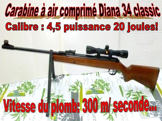 carabine à air comprimé diana panther 34 - Annonce gratuite marche.fr