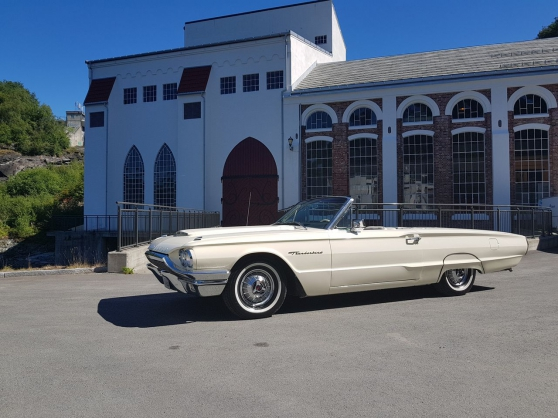 Annonce occasion, vente ou achat 'Ford Thunderbird cabriolet'