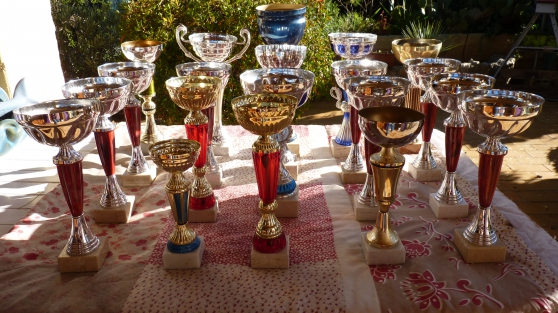 Annonce occasion, vente ou achat 'COUPES TROPHES RECOMPENSES'