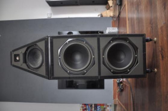 Wilson Audio WP 5.1