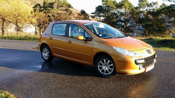 Annonce occasion, vente ou achat 'PEUGEOT 307 1.6 HDI 110 CONFORT'