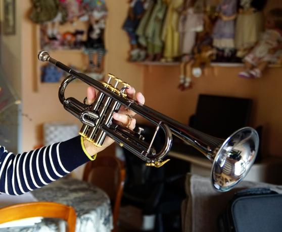 Trompette sib Thomann sous garantie