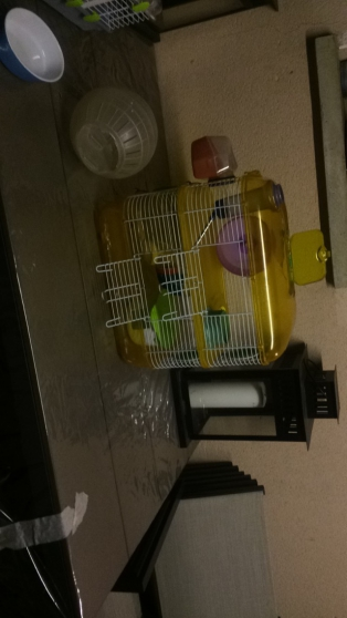 Cage rongeur (hamster, rat, souris,..)