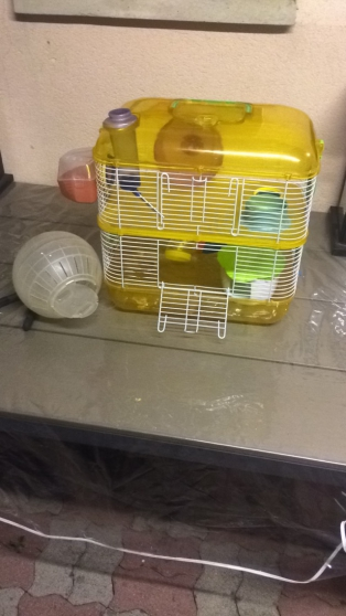 Cage rongeur (hamster, rat, souris,..) - Photo 3