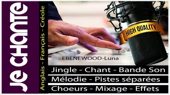 Annonce occasion, vente ou achat 'Chanteuse offre performance'