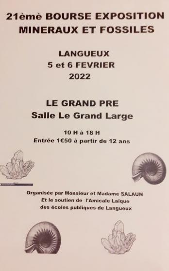 Annonce occasion, vente ou achat '21ème salon de minéraux et fossiles'