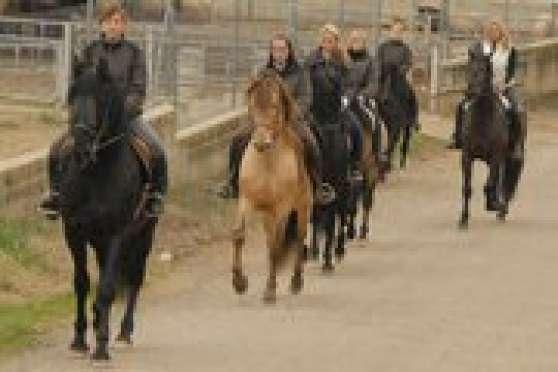 Annonce occasion, vente ou achat 'Stage cavaliers élevage PRE en Espagne'