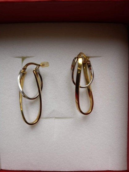 Annonce occasion, vente ou achat 'boucles d\'oreilles'