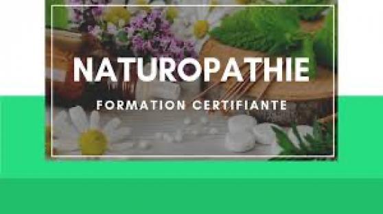 Annonce occasion, vente ou achat 'Devenez naturopathe sans diplôme'