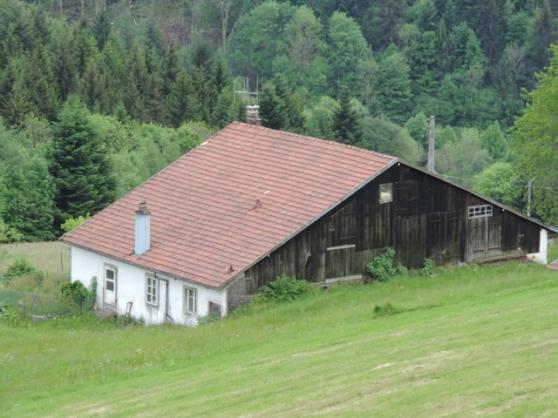 ancienne ferme de montagne 4 16 hectares basse sur le. Black Bedroom Furniture Sets. Home Design Ideas
