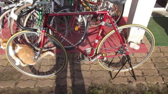 vélo course peugeot d'origine taille 58