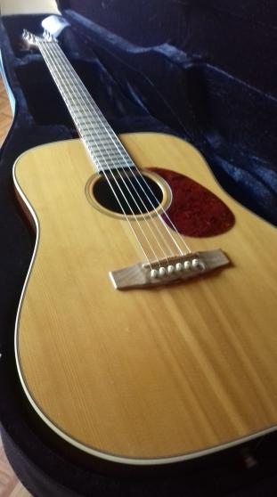 Guitare Cort Earth 100
