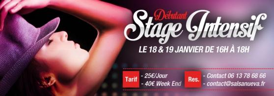 Danse Salsa Stage Débutants 18&19/01