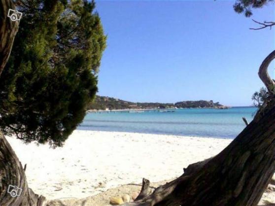 Annonce occasion, vente ou achat 'Mini-villa 4 per. à louer à Santa-Giulia'
