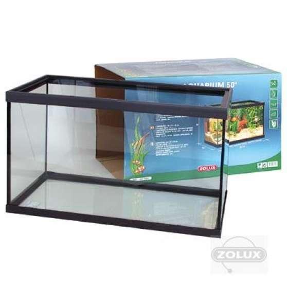 Petit aquarium rectangulaire animaux aquarium vivarium for Aquarium petit prix