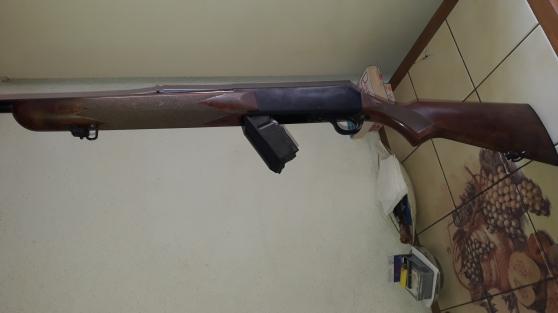 carabine gros gibier