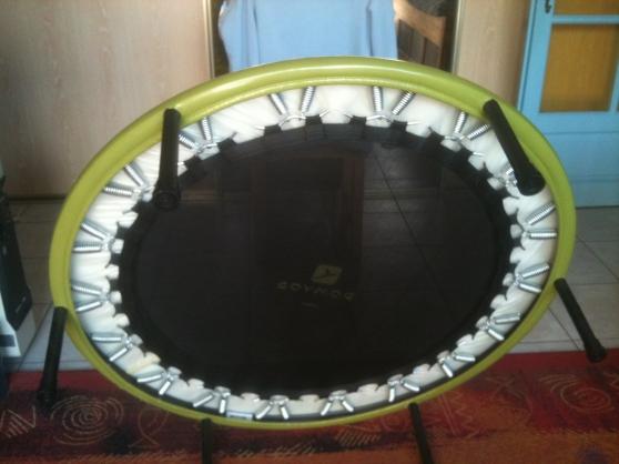 Annonce occasion, vente ou achat 'Mini trampoline'