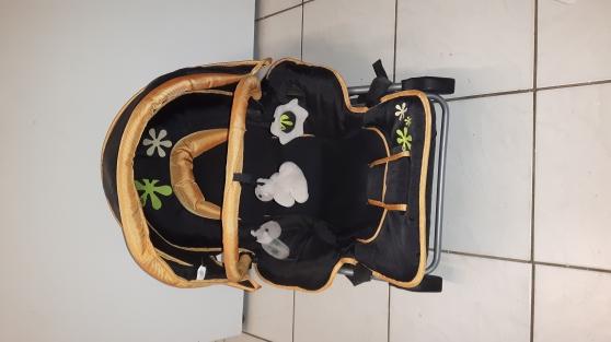 Annonce occasion, vente ou achat 'Transat baby moov'