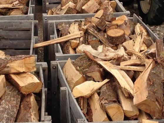 Annonce occasion, vente ou achat 'Bois de chauffage, sec et bonne qualité'