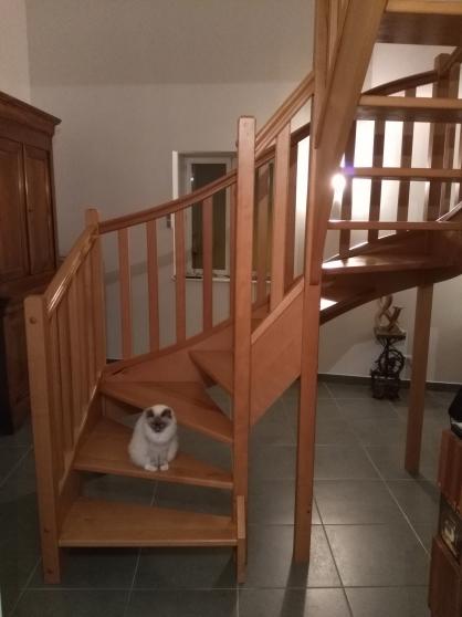 Annonce occasion, vente ou achat 'Escalier 2/4 tournant'